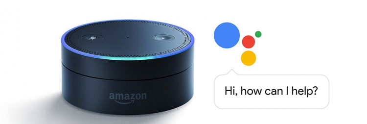 Google Assistant Amazon Echo