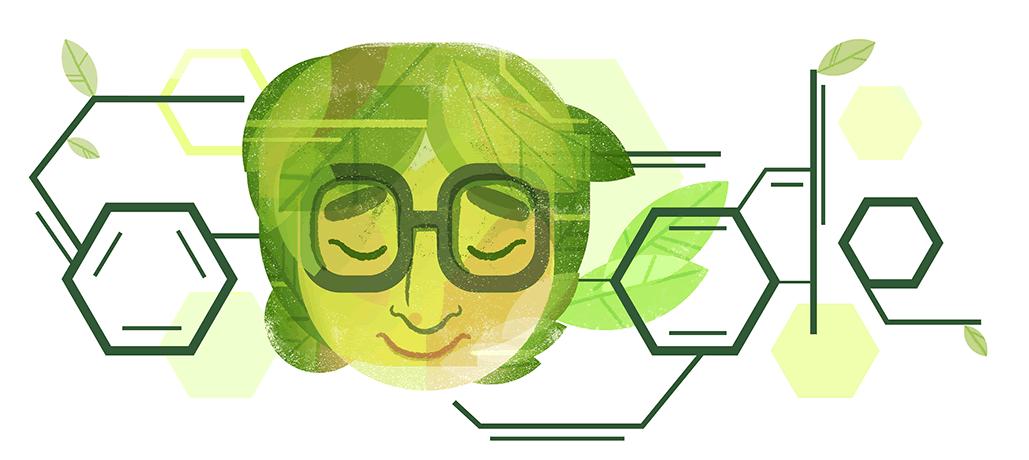Google-Doodle 100. Geburtstag von Dr. Asima Chatterjee