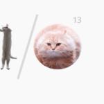 Google I/O Cat