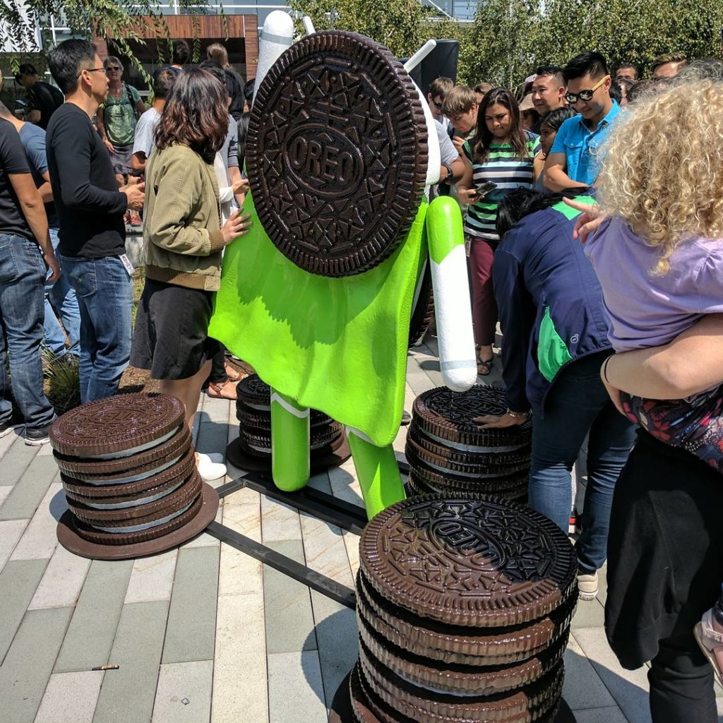 android oreo googleplex back