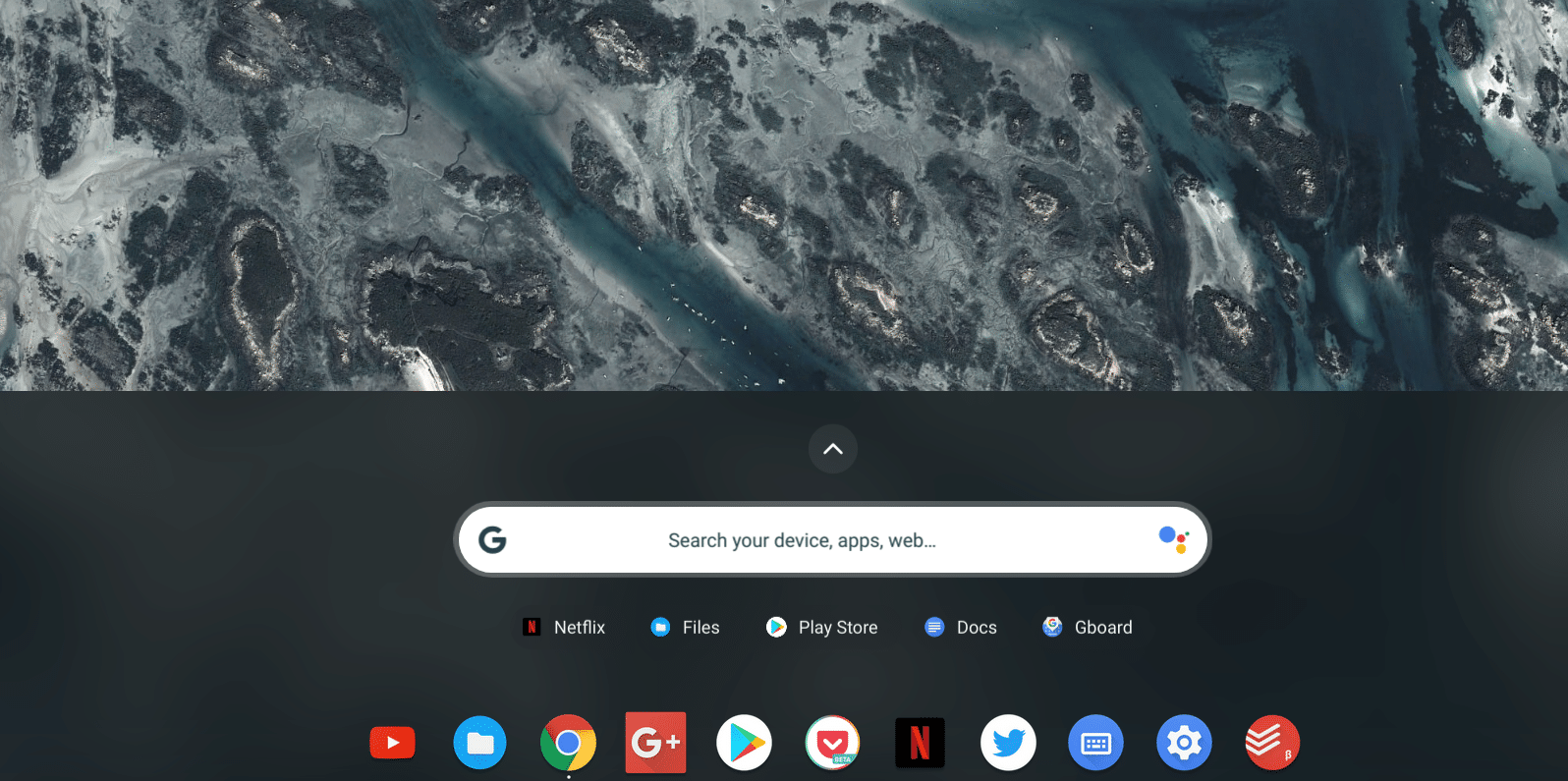 chrome os assistant in search