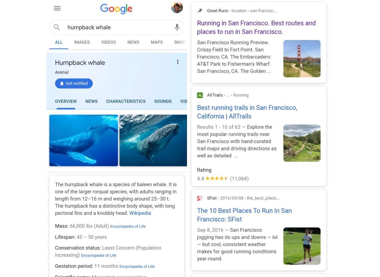 google design old