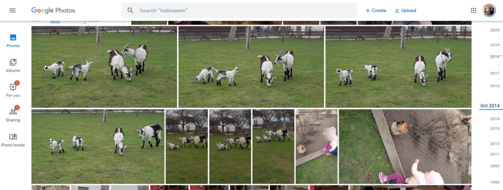 google fotos zeitstrahl