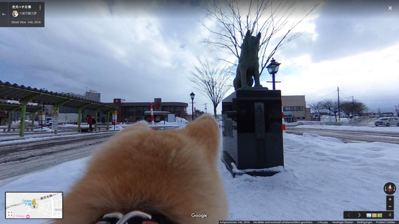 google maps streetview odate hachiko
