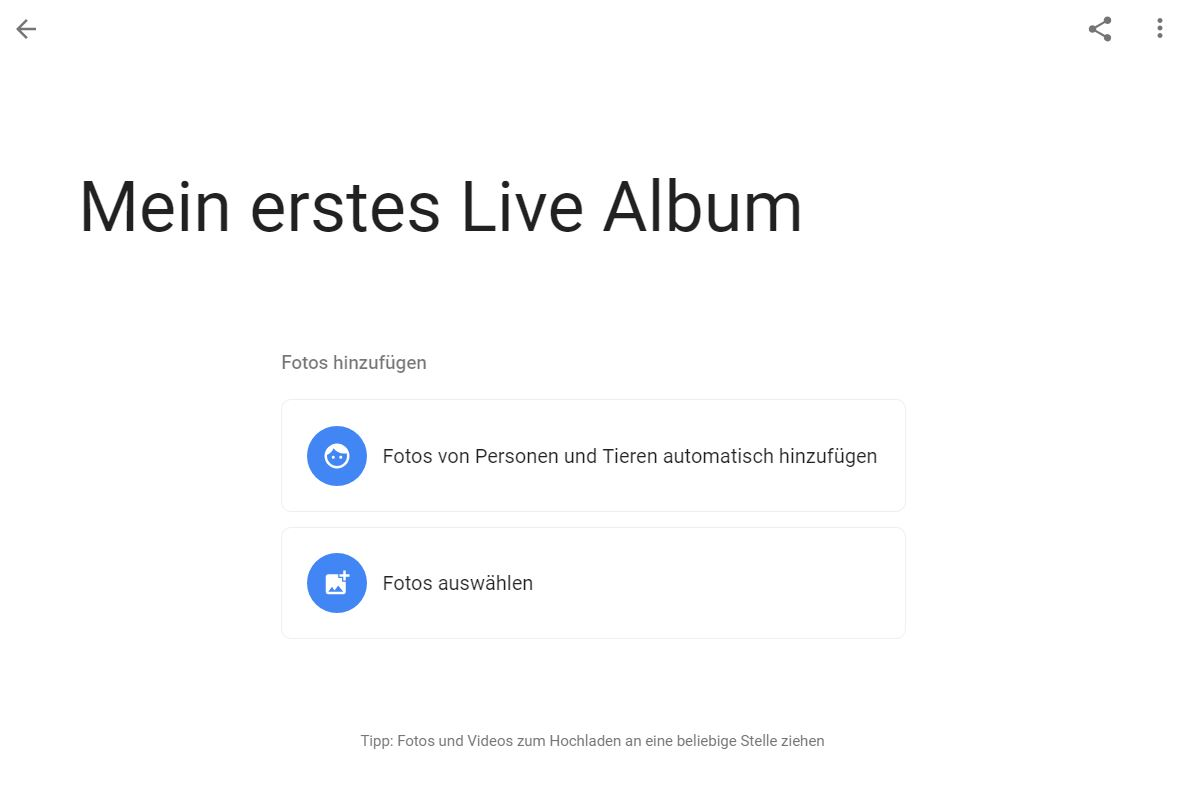 google photos live album