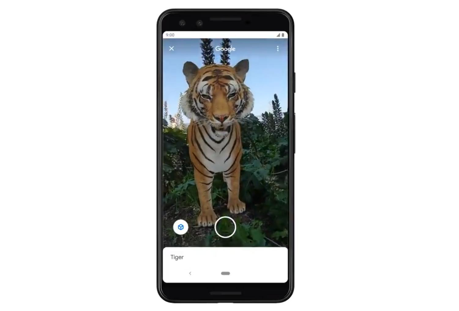 google search 3d ar tiger