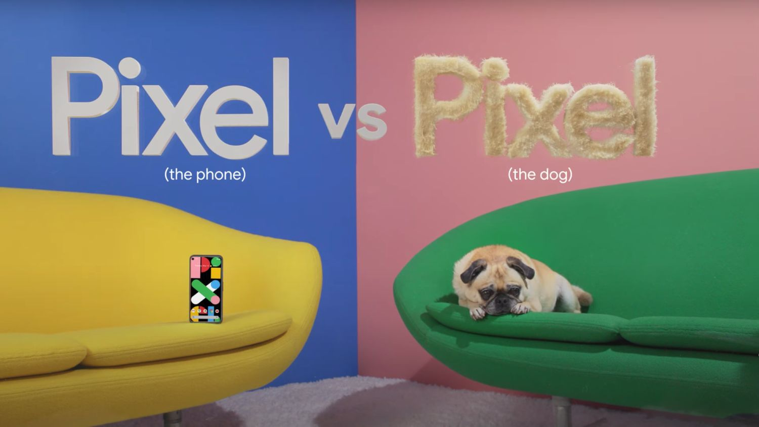 pixel the phone vs pixel the dog
