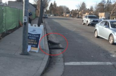 self driving car sandsack