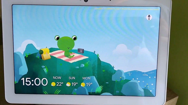 smart display wetterfrosch 2