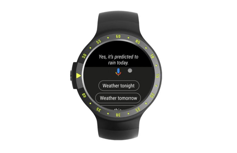 wear os google assistant chips
