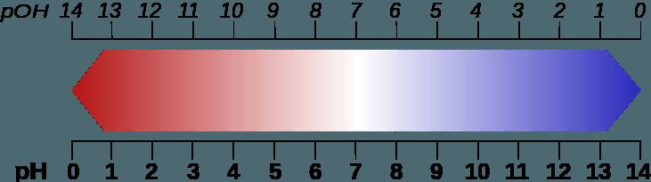 pH Wert-Skala