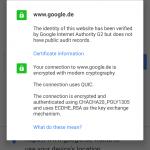 Chrome Dev for Android SSL Infos